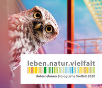 Logo und Key Visual UBi 2020